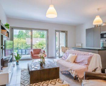 location-appartement-menthon-saint-bernard-t2-terre-eo